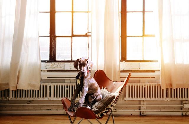 【椅子】ギシギシきしむようになって長年放置のオフィスチェア… 10分ほどでスムーズにした方法